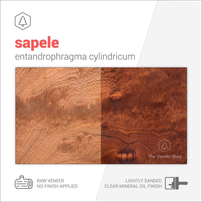Figured sapele mahogany veneer sheets CS2SAP1X2 2 sheets grade A wood veneer leaf  wood veneer sample  marquetry veneer 31x24cm