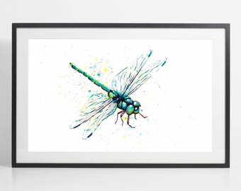 Watercolor Dragonfly Painting Print – dragonfly art, animal watercolor, dragonfly illustration, animal illustration, dragonfly poster, art