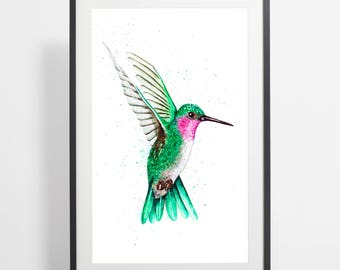 Watercolor Hummingbird Painting Print – hummingbird art, bird watercolor, hummingbird illustration, bird illustration, hummingbird poster