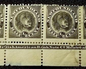 Vintage Stamp Scott 58 Half Cent Dog MNH VF Block Of 4 BABNCo Fine Very FREE Shipping
