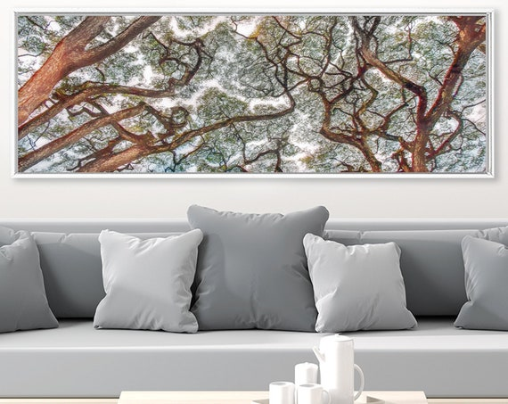 Crown Shyness Phenomenon Art, Oil Painting On Canvas - Ready To Hang Large Panoramic Canvas Wall Art Prints With Or Without Floating Frames.