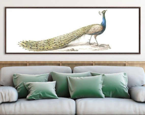 Peacock canvas wall art - ready to hang large panoramic gallery wrap canvas watercolor wall art prints with or without external float frames