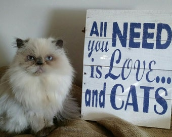 All you need is love and cats