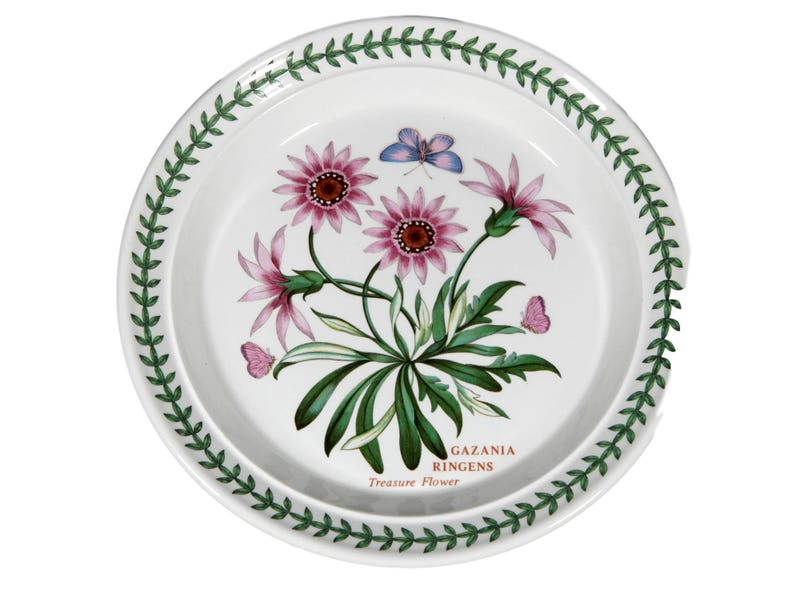 "NEW PORTMEIRION China Botanic Garden 8/"" Salad Plate Treasure Flower GAZANIA RING"