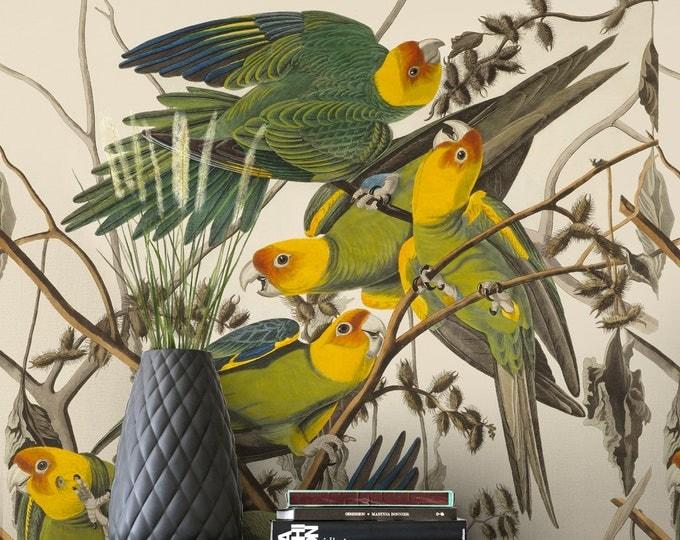 Carolina Parrot Audobon Wallpaper