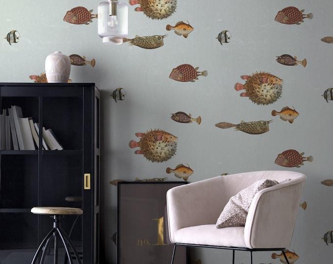 Something Fishy Wallpaper