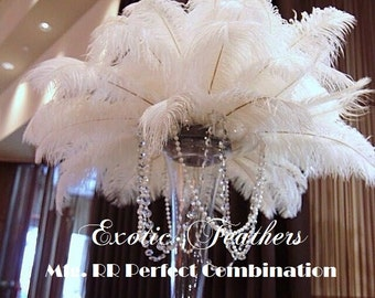 """50 pcs White Drab Ostrich Feathers 13-16"""",wedding table centerpiece,decoration,ostrich centerpiece, feather centerpiece. Exotic Feathers"""