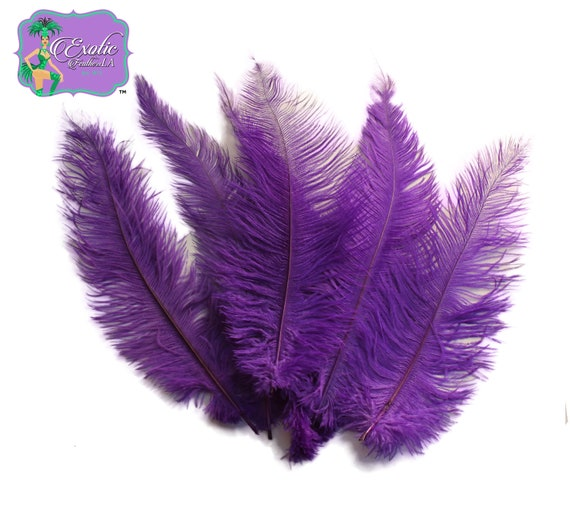 10 Piece Purple Ostrich Tail Large Feathers Centerpiece Halloween Costume 12-16/""