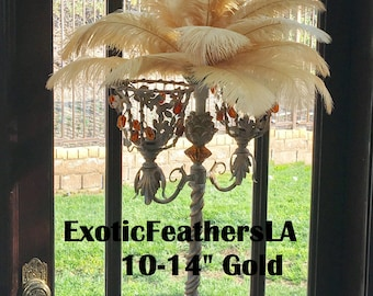 """1/100 Pcs. Ostrich Feathers 'Gold Collection' 10-14"""" Feathers wedding table centerpiece,decoration,ostrich centerpiece, feather centerpiece."""