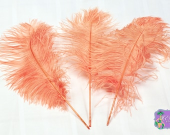 USA Seller 10 Pcs. APRICOT Ostrich Feather Plumes Tails 13 to 18 inches Long. Mardi Gras, Feather CenterPieces, Samba Costumes, Burlesque