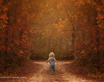 Fall backdrop, Autumn Digital Backdrop, Fall Trails Digital Background, Leaves, Creamy, Dreamy Backdrop, Photoshop, PSE -Instant Download