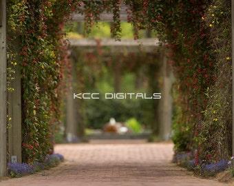 Spring backdrop, Summer Digital Backdrop,  Digital Background, Flower Path, Creamy, Dreamy Backdrop, Photoshop, PSE -Instant Download