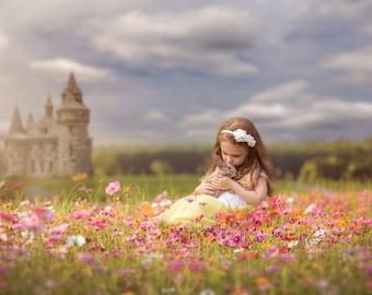 Castle backdrop, Summer Digital Backdrop, Digital Background, Flower Fields, Fairy tale, Creamy Backdrop, Photoshop, PSE - Instant Download
