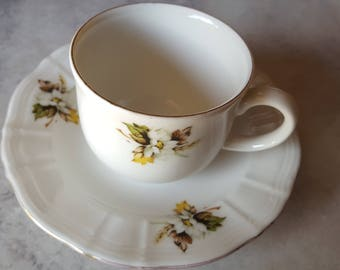 Royal Doulton Tea Cup and Saucer