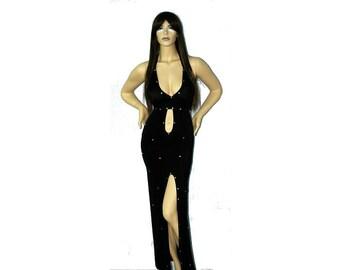 Exotic Dancewear  floor length rhinestone dress and Matching Thong