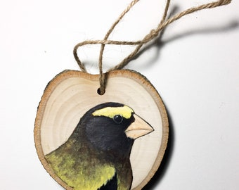 Grosbeak Ornament Etsy
