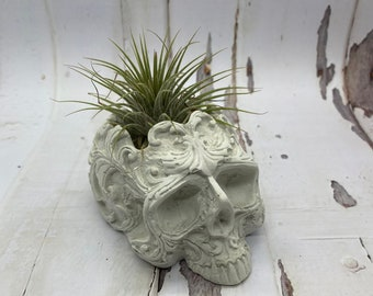 Fancy Skull Tea Light Holder | Fancy Skull Air Plant Holder | Fancy Skull Planter | Fancy Skull Planter | intricate Skull Holder | Intricate