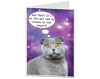 Funny Birthday Card Cat From For Lovers Cats Mum Dad