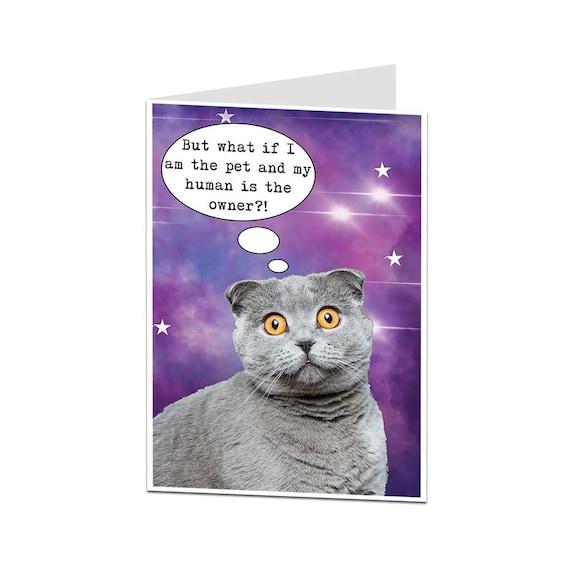 Lustige Geburtstag Card Katze Card Grusskarte Von Cat Karte Etsy
