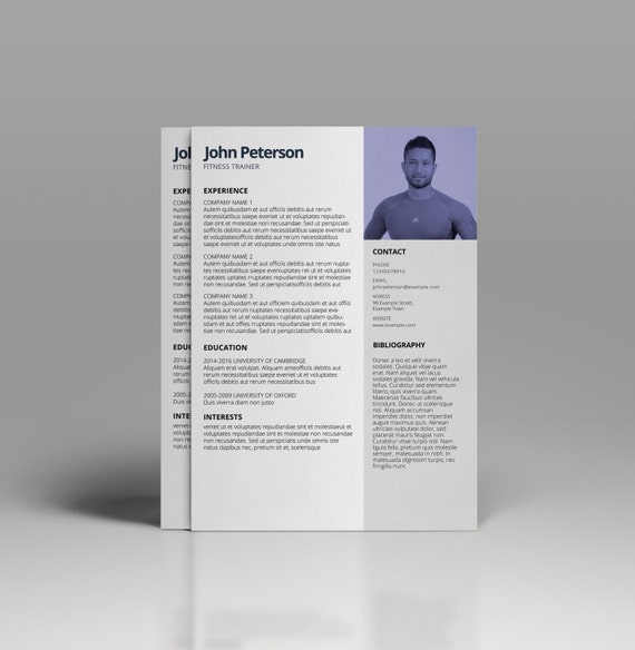 Resume Template For MS Word CV Template Professional Cv