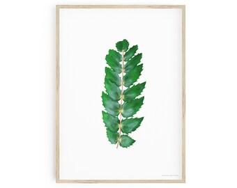 Printable Botanical Art, Oregon Grape Wall Art, Mahonia Nervosa