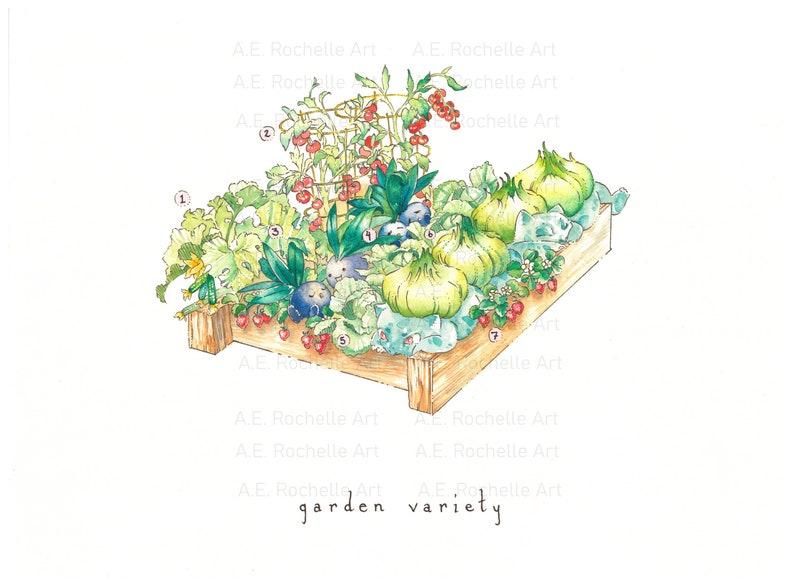 Garden Variety Pokémon and Square Foot Gardening Pokémon image 0