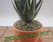 SECRET STASH Faux Succulent - Hide-A-Key Pot - 7-1 2 quot Tall x 3-1 2 quot Wide - quot Hide Your Stash in Plain Sight quot