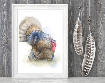 Wild Turkey Watercolor Painting. Fine Art Print. Decor. Wildlife.