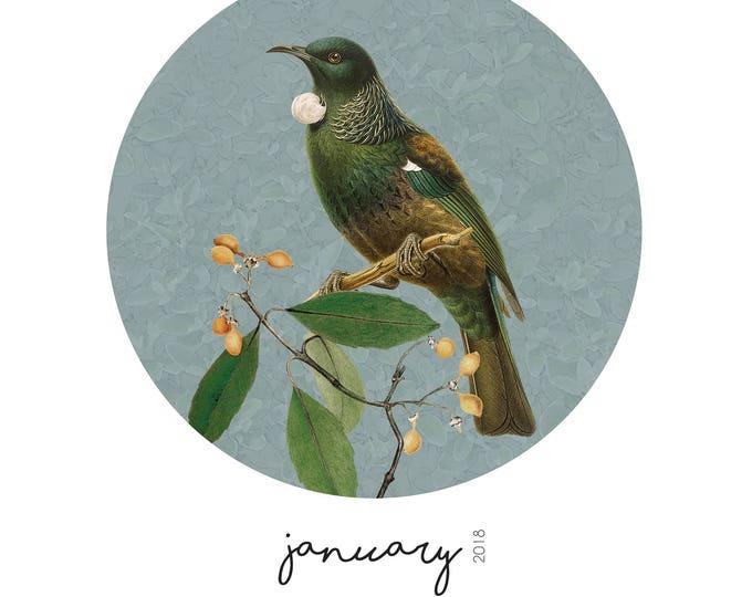 2018 Native New Zealand Birds Calendar with Reusable Wooden Hanger