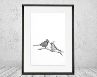 Bird Black And White Love Pencil Sketch Cardinal Home Decor Image Digital Download Print Art Printable