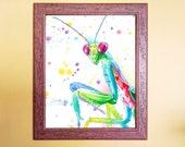 Rainbow Watercolour Mantis Print