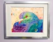 Watercolour on Wood Pigeon Print