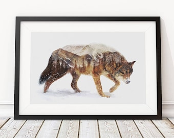 Arctic Wolf by Andreas Lie Art Print