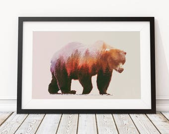 Brown Bear by Andreas Lie Art Print