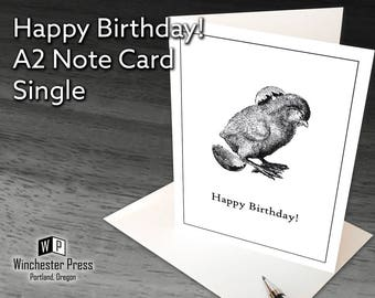 Birthday Card, Blank Birthday Card of Chick Hatching, Happy Birthday Card Blank Inside, Baby Chick Vintage Card, Old Fashioned Birthday Card