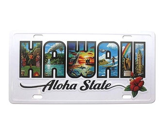 6in x 12in Hawaii the Aloha State License Plate Artwork by Eddy Y