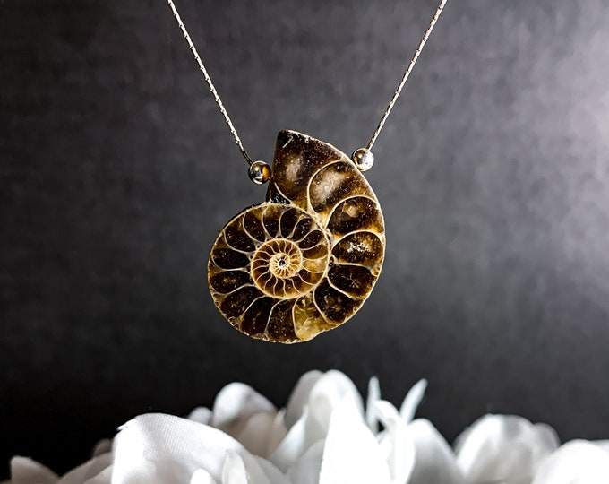 Ammonite Pendant Fossil Necklace