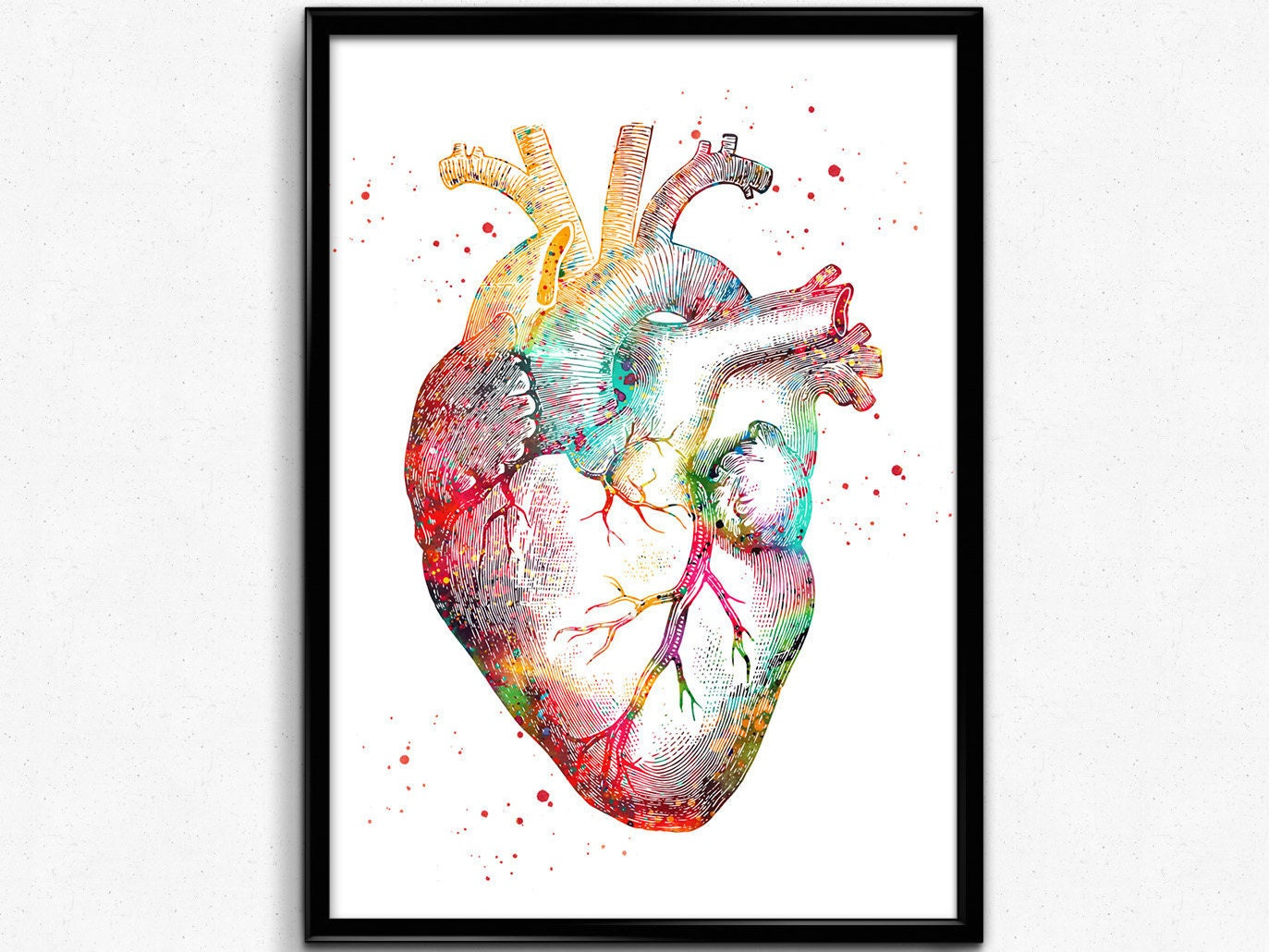 Human Heart Watercolor Print Medical Art Heart Poster Etsy