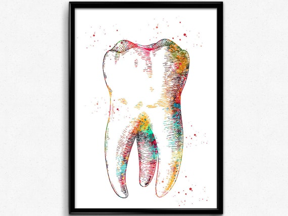Orthognathic Anatomy Watercolor Print Teeth Anatomy Art Medical Cabinet Office