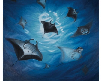 Manta Rays - original oil painting on streteched canvas by Christian Turner