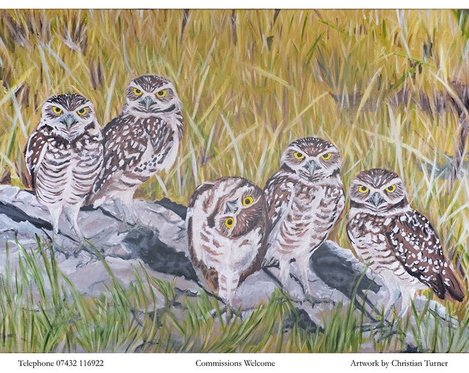 Owls - original oil painting on stretched linen canvas by Christian Turner