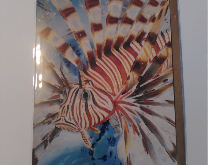Lionfish - Greeting Card with Envelope in Cellophane Wrapping