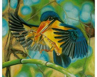Buff-Breasted Paradise Kingfisher - original oil painting on stretched canvas by Christian Turner