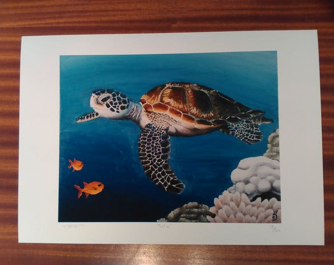 Turtle - Limited Edition Giclee print of painting by Christian Turner