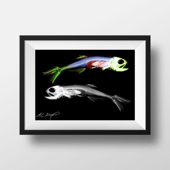 print Sciart Diaphonized eastern tiger salamander