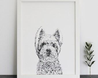 Westie Print
