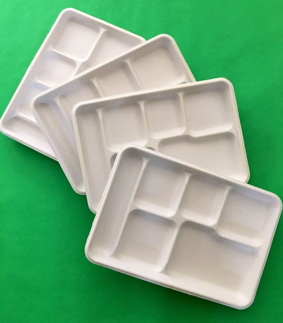 & Divided Food Trays Set of 10 White fiber paper plates