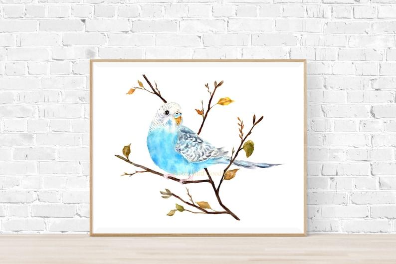 Blue Budgie Print Budgie Art Blue Bird Print Budgie image 0