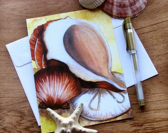 Seashell  Greeting Cards