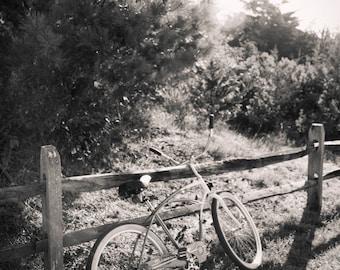 bicycle, Avalon NJ 2016.
